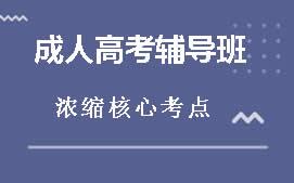 佛山禅城区成人高考考前辅导班